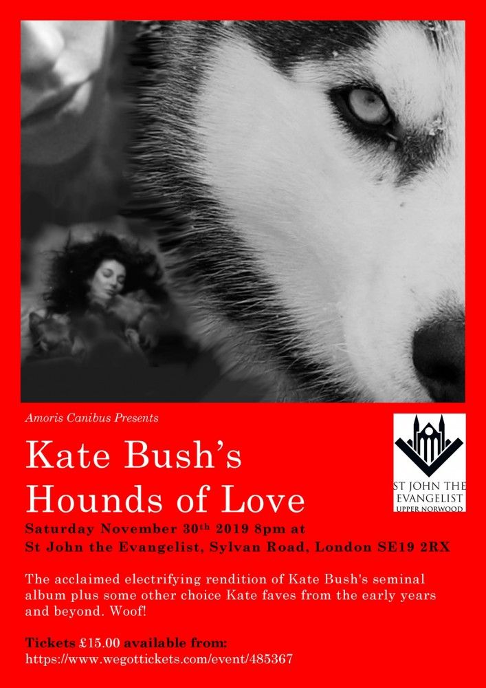 Hounds of Love Live